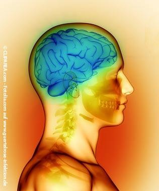 Enzephalitis Gehirnentzündung