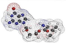 Molekül Virus Bild