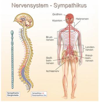 Nervenblockade bei zoster