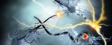 Ganglionitis, Ganglien, Nervenzellen Mensch